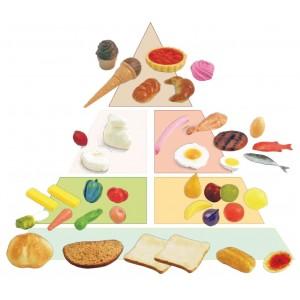 Potravinová pyramída, 41 ks