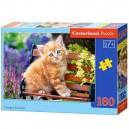 Castorland Puzzle Mačiatko, 180 dielikov